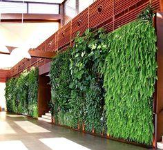 vertical garden, green wall, green studios, lebanon, urban farming, urban…