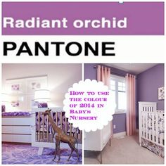 It's all about Radiant Orchid Colour of 2014  Inspiration on how to use this colour effortlessly in a baby's nursery.  homedecor #orchid #baby #room