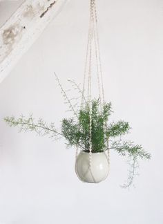 charming macrame for plants!