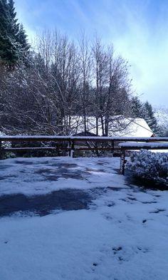 Una particular mañana de Primavera en Bariloche. Una intensa nevada cubrió de blanco el parque del hotel y las montañas.