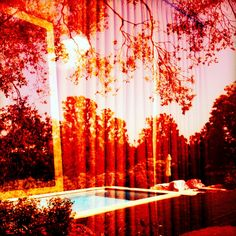 Images like swimming pools are layered with ambiguity and anxiety