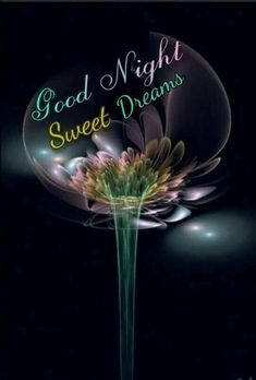 Trendy Birthday Wishes For Mother In Law In Hindi Good Night Prayer, Good Night I Love You, Good Night Friends, Good Night Blessings, Good Night Wishes, Good Night Sweet Dreams, Good Night Image, Good Morning Good Night, Day For Night