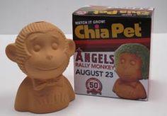 1000 images about monkey see monkey do on pinterest monkey monkey