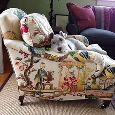 Brunschwig & Fils Le Lac Two of my favorites - a wonderful classic Chinoiserie fabric and a dog.