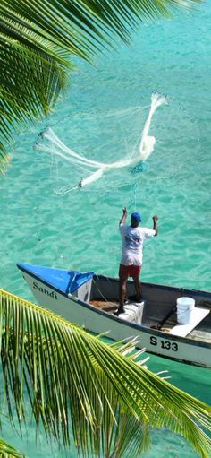 net fishing in Barbados Barbados Beaches, Barbados Travel, Bridgetown, Southern Caribbean, Caribbean Sea, Beautiful Islands, Beautiful Beaches, Places To Travel, Places To Visit