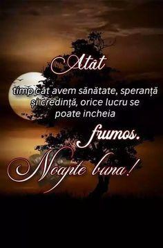 Happy Evening, Spiritual Quotes, Viral Videos, Good Night, Trending Memes, Funny Jokes, Spirituality, 8 Martie, Construction