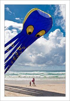 Octopus Kite On The Beach  ~ Japan ...