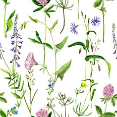 Draw Flower Patterns seamless pattern with watercolor drawing flowers and herbs vector art… - Flower Pattern Drawing, Floral Drawing, Watercolor Drawing, Floral Watercolor, Flower Patterns, Watercolor Paintings, Drawing Flowers, Botanical Flowers, Botanical Prints