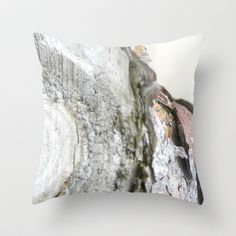 flotsam and jetsam no.9 Throw Pillow by Pia Schneider [atelier COLOUR-VISION] - $20.00.  Conceptual Photography. Topic: Flotsam and Jetsam. Photography: 2009 Digital Editing: 2014 #pillow #throwpillow #home #homedecor #livingroom #bedroom #decor #hometextile #flotsam; #jetsam; #Sylt; #nature; #art; #hörnum; #photography; #wood; #bark; #sea; #transience; #black; #white;  #grey; #old; #beach; #northsea; #artprint; #tree  #northsea #beach #perspective #piaschneider #ateliercolourvision