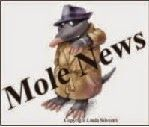 Mole News, administered by the NZ Centre for Political Research, 'exposes' race-based privilege in New Zealand.
