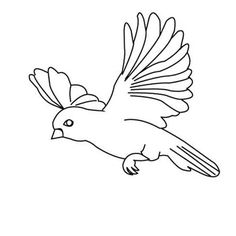 Birds Amazing Bird Flying Floating Coloring Page