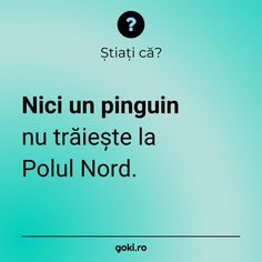 Stiati ca Pinguin Amazing Facts, Diversity, Fun Facts, Draw, Culture, Drawings, Funny Facts, To Draw, Paint