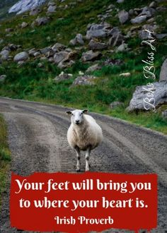 Ireland: Quotes to Stir Your Soul & Tempt Your Wanderlust Your feet will bring you where your heart is. Scotland Travel, Ireland Travel, Irish Toasts, Irish Jokes, John Muir Quotes, Irish Proverbs, Irish Culture, You Are Blessed, Irish Blessing