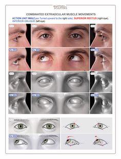 32 Ideas Eye Anatomy Zbrush For 2019 Eye Anatomy, Facial Anatomy, Human Anatomy Drawing, Human Body Anatomy, Anatomy Poses, Anatomy Art, Artist Games, Anatomy Sculpture, Realistic Eye Drawing