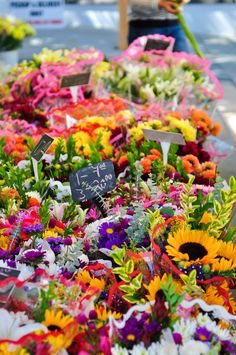 Farmers Market Flowers by laurie.vengoechea on Bloemenmarkt Exotic Flowers, Beautiful Flowers, Purple Flowers, Farmers Market Display, Farmers Market Stands, Cut Flower Garden, Cactus Flower, Flower Cart, Flower Truck