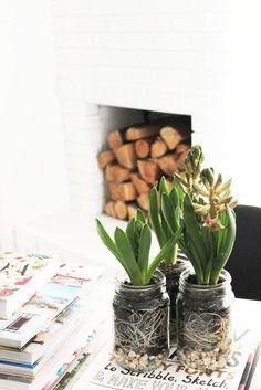 5 Minute DIY | Spring Bulb Jars