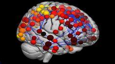 Scans monitor how teenage mind develops