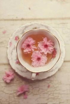 Ana Rosa, omgcica: omgcica............................................................................... Aceita um chazinho de flores acalma o coração. •~✿ڿڰۣ Sol Holme •~✿ڿڰۣ