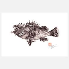 My design inspiration: Scorpion Fish 18x12 on Fab.