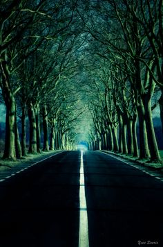 ~~Au bout de la route / At the end of the road | Road from Grez-Doiceau to Jodoigne Belgium | by Yves Souris~~