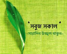 Best and Top good morning images in bangali and bangla picture and photo good morning bengali many more images couple bangla love bangla images Good Morning Sunday Images, Good Morning Wednesday, Good Morning Beautiful Quotes, Good Morning Images Download, Good Morning Flowers, Morning Pictures, Good Morning Quotes, Bangla Image, Bangla Love Quotes