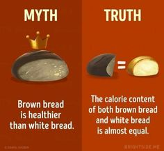 15 Myths About a Healthy Diet You Need to Stop Believing True Facts, Weird Facts, Brown Bread, Daily Facts, The Ugly Truth, Fact Quotes, Science Projects, Health Diet, Things To Know