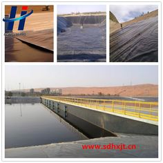 Geomembrane Type And Hdpe Material Waterproof Plastic Dam Liner , Find Complete Details about Geomembrane Type And Hdpe Material Waterproof Plastic Dam Liner,Dam Liner,Geomembrane Type,Hdpe Geomembrane from -Hongxiang New Geo-Material Co., Ltd. Supplier or Manufacturer on Alibaba.com