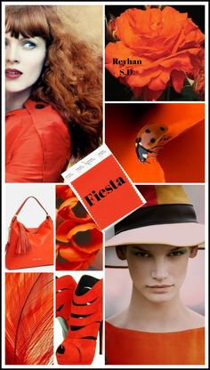 '' Fiesta – Pantone Spring/ Summer 2019 Color '' by Reyhan S. '' Fiesta – Pantone Spring/ Summer 2019 Color '' by Reyhan S. Color Trends, Color Combos, Quoi Porter, Color Collage, Color Balance, Color Stories, Fashion Colours, Color Of The Year, Summer Colors