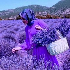 Everything has beauty, but not everyone can see - Confucius Lavender Cottage, Lavender Blue, Lavender Fields, Lavender Flowers, Purple Flowers, Pink Purple, French Lavender, All Things Purple, Pink Love