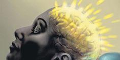 Que fait le cerveau quand il ne fait rien ?