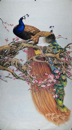 Beautiful Feathers and Fragrant Flowers (Chinese Peacock Painting)