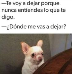 Jajaja hombres 🙄🙄🙄 Funny Spanish Memes, Spanish Humor, I Shot The Sheriff, Mexican Moms, Funny Quotes, Funny Memes, Funny Videos, Humor Mexicano, Seriously Funny
