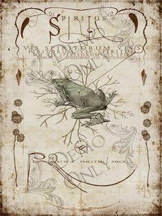 Spiritus spell page
