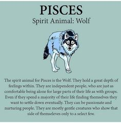 Astrology Pisces, Zodiac Signs Pisces, Pisces Quotes, Zodiac Sign Traits, Pisces Love, Warrior King, Just Be You, Spirit Animal, Alpha Wolf