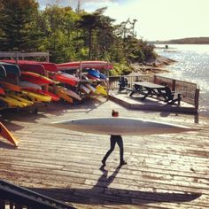 Sea kayaking with East Coast Outfitters is such a special experience.