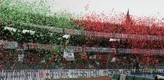 Ternana-Brescia: Forventede startopstillinger!