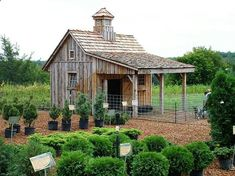 Shed Plans - Building a Chicken Coop - Cute Building a chicken coop does not have to be tricky nor does it have to set you back a ton of scratch. - Now You Can Build ANY Shed In A Weekend Even If You've Zero Woodworking Experience!