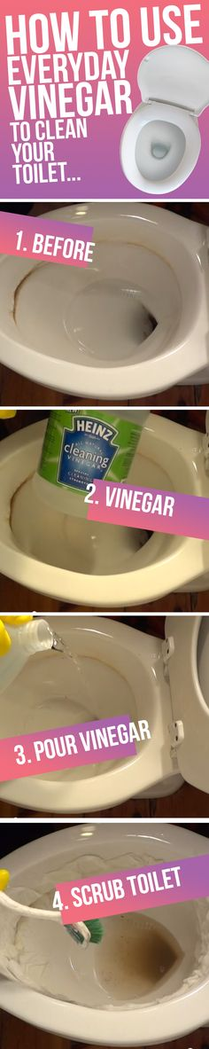 How To Clean Hard Water Stains From The Toilet... You'll want to try this ASAP!