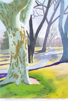 $100 USD Original small watercolour painting; London Plane, High Park, by MYM, April 12, 2020. (sycamore, tree, forest, spring light, parkland, watercolor, original art, Canadian artist, for sale) Watercolour Paintings, Watercolor, London Plane Tree, Light Spring, Tree Forest, Canadian Artists, Flocking, North America, Original Art