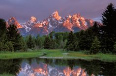 Schwabacher's Landing in the Tetons. (One of my favorite parks)