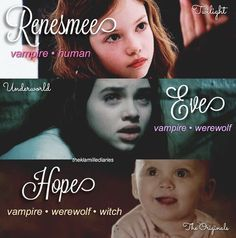 Vampire Diaries Poster, Vampire Diaries Wallpaper, Vampire Diaries Damon, Vampire Diaries Quotes, Vampire Diaries The Originals, Popular Movie Quotes, Legacy Tv Series, Vampier Diaries, Hope Mikaelson