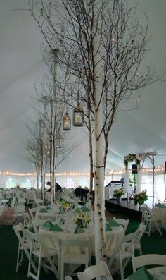 This Idea But With A Thicker Tree And No Branches Then Add Birch Decorations Candles Etc Around The Tent