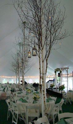 tent.jpg 380×640 pixels