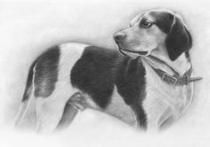 Doesn't thid Dog looks cute in this portrait? Order one for your pet today. #whataportrait #pet #dog #art #artist #artistic #artlove #artlover #loveart