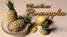 Miniature Pineapples - SugarCharmShop YouTube Tutorial