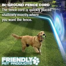 Wireless Dog Fence with Radio       >>>> Check this out   http://amzn.to/2crydo5