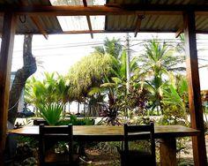 For Sale: 26-Room Hotel, Puerto Viejo, Costa Rica
