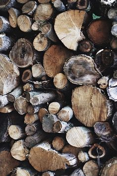 the woodpile:  chopping down trees and storing wood is a part of cottage life - you have to have something to burn in the fireplace!