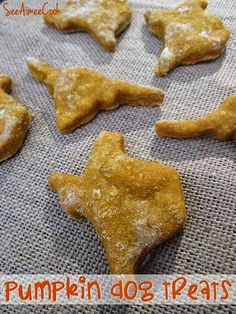 Pumpkin Dog Treats   See Aimee Cook Easy, 1 bowl, 4 ingredient recipe! #dogtreats #pumpkin