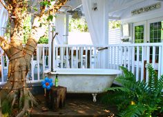 Carcary Residence - eclectic - Deck - Tampa - Mina Brinkey